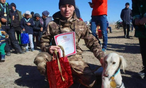 Qazaqstan 30: Соревнования охотничьих собак состоялись в Карагандинской области